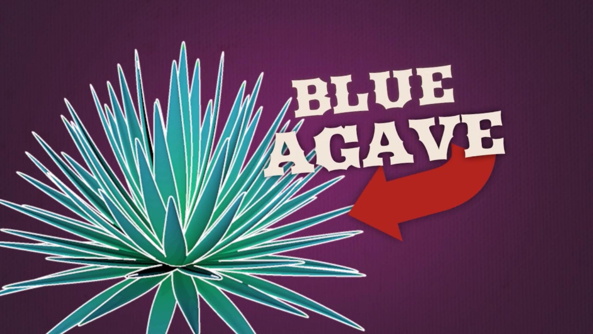 Tumbleweed Agave TV